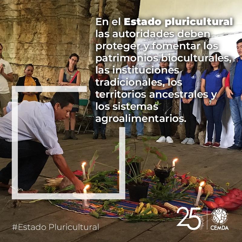 CEM_estados_pluriculturales_4