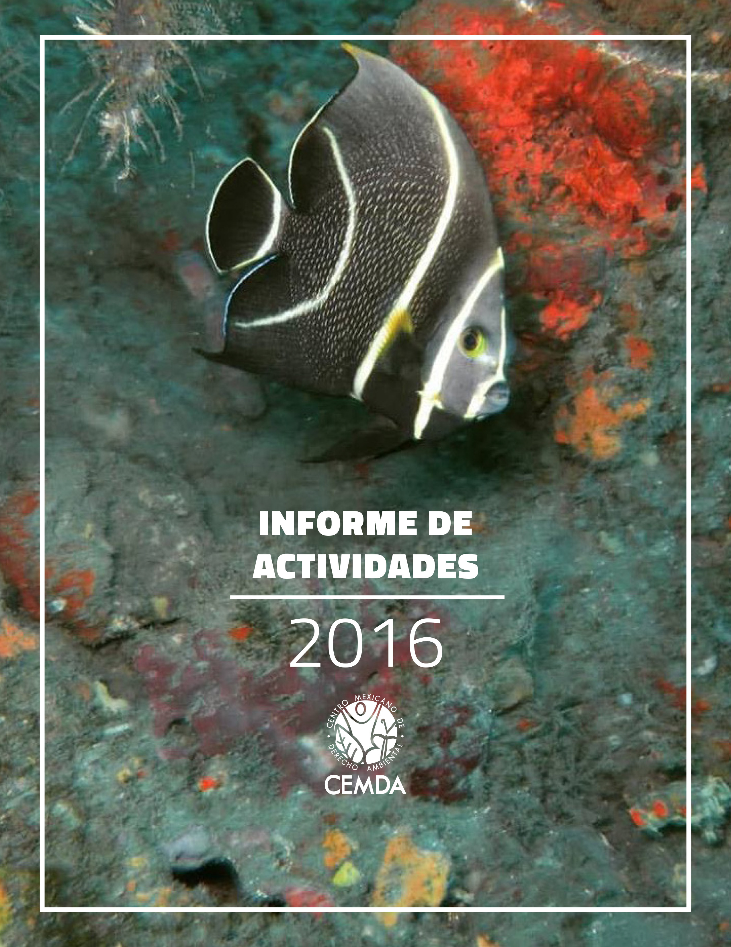 Reporte de Actividades 2016